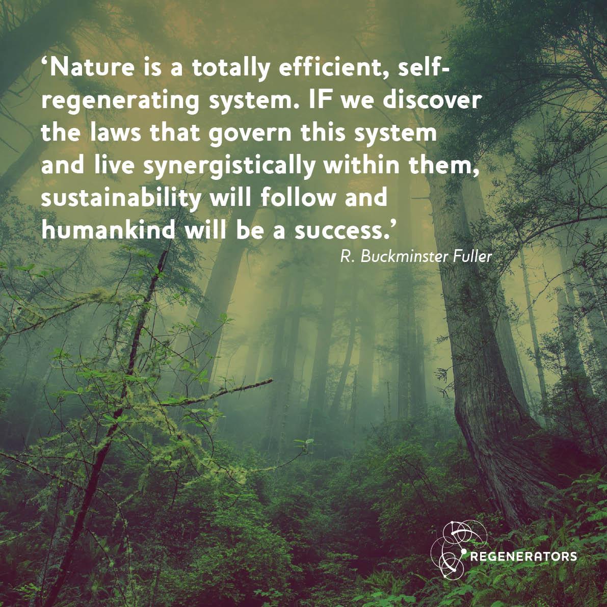 Quote from R. Buckminster Fuller
